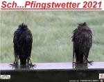 Pfingstwetter2021.jpg auf www.funpot.net