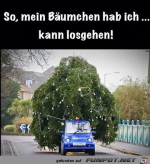 Der-Baum-ist-besorgt.png auf www.funpot.net