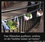 Lustige-Pflanz-Idee.jpg auf www.funpot.net