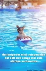 bereits-dich-vor-zu-sterben.jpg auf www.funpot.net