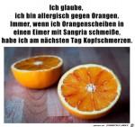 Diese-Orangenscheiben-bereiten-mir-Kopfweh.jpg auf www.funpot.net
