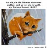 Der-Sommer-kommt-nicht.jpg auf www.funpot.net