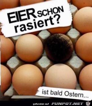Eier-schon....jpg auf www.funpot.net