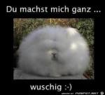 wuschig.png auf www.funpot.net