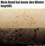 Hund-mag-keinen-Winter.jpg auf www.funpot.net