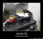 ich-bin-Öl.jpg auf www.funpot.net
