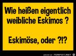 Eskimo.png auf www.funpot.net