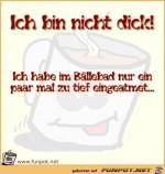 Ich-bin-nicht-dick.jpg auf www.funpot.net
