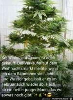 Weihnachtsbaum-ist-auch-gekauft.........jpg auf www.funpot.net