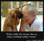 Sei-nicht-traurig.jpg auf www.funpot.net