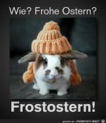 Frost-Ostern.jpg auf www.funpot.net