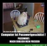 Passwort-geschützt.jpg auf www.funpot.net