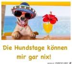 Die-Hundstage.jpg auf www.funpot.net