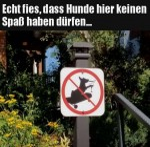 Hunde-dürfen-keinen-Spaß-haben.jpg auf www.funpot.net