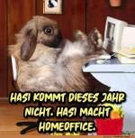 Hasi-kommt-nicht.jpg auf www.funpot.net