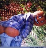 Halloweenärschle.jpg auf www.funpot.net