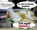 Was-hast-du-der-Katze-gegeben?.jpg auf www.funpot.net