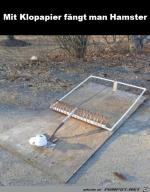 So-fängt-man-Hamster.png auf www.funpot.net