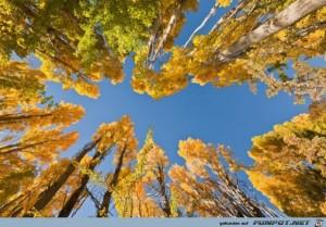 Tolle Orte  die du im Herbst besuchen kannst 14