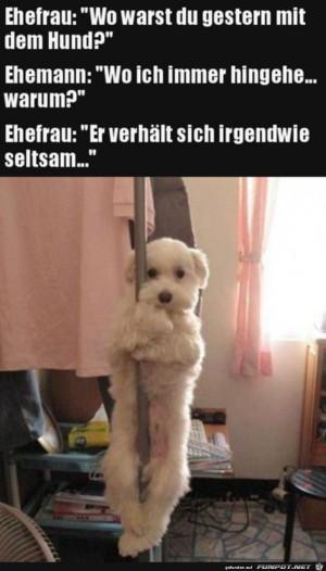 Wo-warst-du-mit-dem-Hund?.jpg auf www.funpot.net
