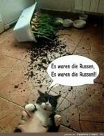 Die-Russen.jpg auf www.funpot.net