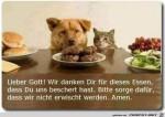 lieber-Gott.jpg auf www.funpot.net