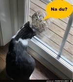 Lässt-du-mich-rein?.jpg auf www.funpot.net
