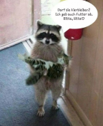 Darf-die-Katze-hier-bleiben?.png auf www.funpot.net