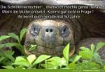 Die-Schildkrötentochter....jpg auf www.funpot.net