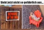 Was-für-ein-gefährlicher-Hund.jpg auf www.funpot.net