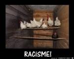 Schwarzes-Huhn.jpg auf www.funpot.net