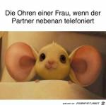 Die-Ohren-einer-Frau.jpg auf www.funpot.net