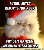 Zu-viel-Weihnachtsgedöns.jpg auf www.funpot.net