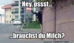 Brauchst-du-Milch.jpg auf www.funpot.net