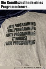 Der-Programmierer.jpg auf www.funpot.net