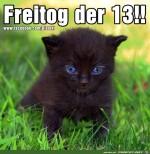 Freitog-der-13.jpg auf www.funpot.net