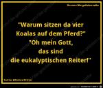 eukalyptische-Reiter.png auf www.funpot.net
