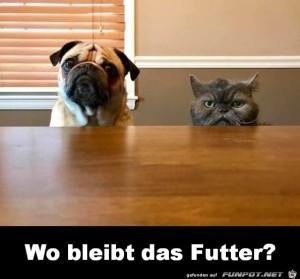 Wo-bleibt-das-Futter.png auf www.funpot.net