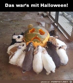 Das-wars.jpg auf www.funpot.net