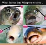 Wenn-Frauen-ihre-Wimpern-tuschen.jpg auf www.funpot.net