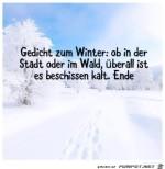 Winter-Gedicht.jpg auf www.funpot.net