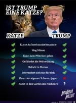 Ist-Trump-eine-Katze.jpg auf www.funpot.net