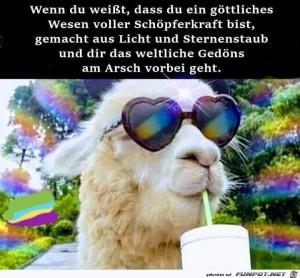 Du-bist-ein-göttliches-Wesen.jpg auf www.funpot.net