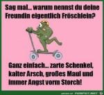 Fröschlein.jpg auf www.funpot.net