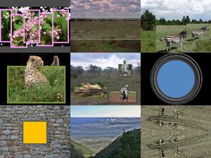 Tansania Sansibar