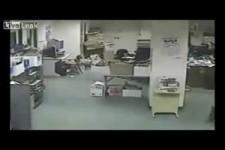 der Hund hat das Beben vorher gespürt