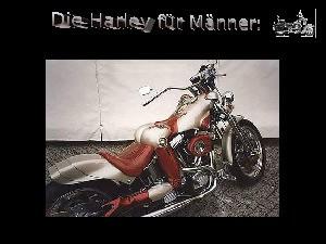HARLEY DAVIDSON für Männer und Frauen