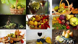 Herbst Stillleben