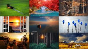 Maravillosas Imagenes - Tony-Bares