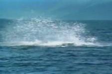 im Kayak fast erschlagen worden